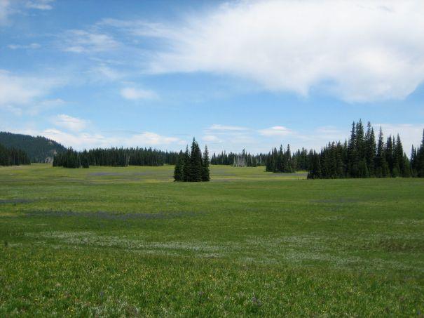 Mt Rainier National Park Jul-Sep 2006 - 094